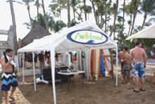 wildmex sayulita surf puerto vallarta
